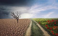 Exposition: «Le climat se modifie» |